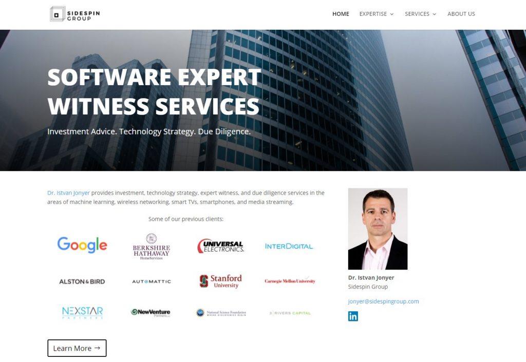Software Expert Witness